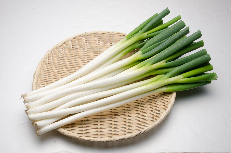 Deep-rooted Welsh onions (Shiro-negi)