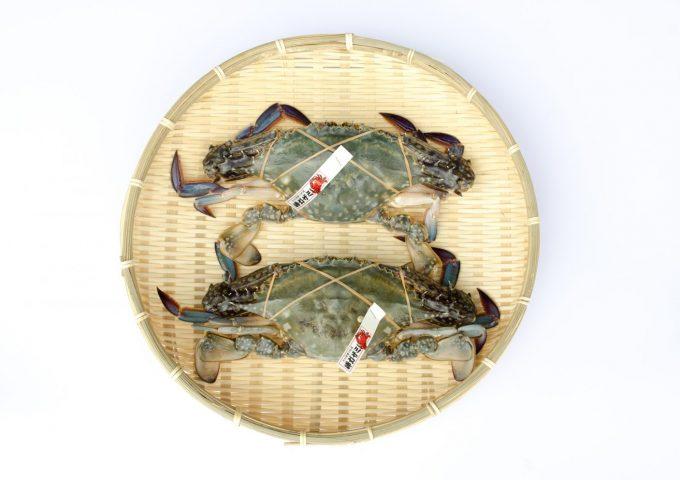 Japanese blue crab (watarigani)
