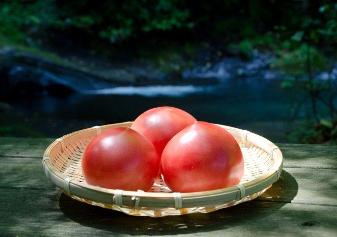 しゅんくる vol.1「大分のトマト×大分味一ねぎ」