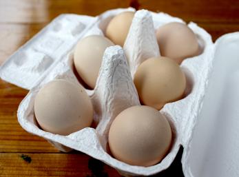 おおいた烏骨鶏卵
