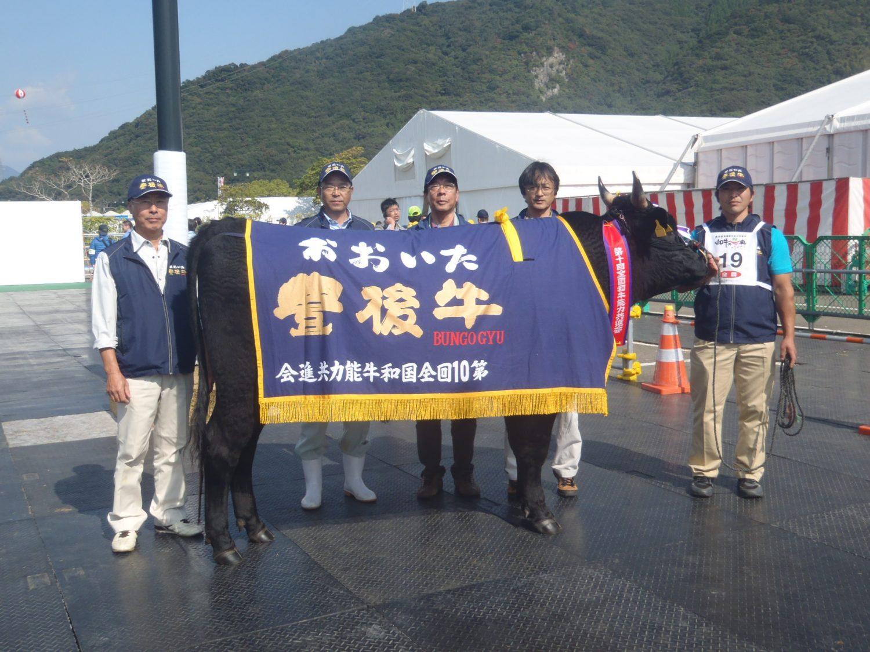 豊後牛が日本一に!全国和牛能力共進会で2冠達成!